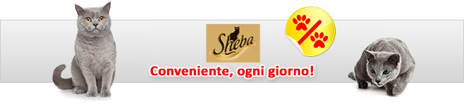 Sheba cibo umido per gatti