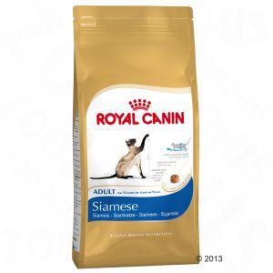 royal canin gatto razze