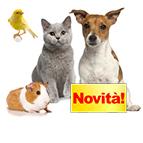 Nuovi accessori per cani