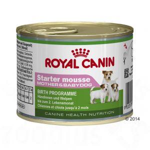 cibo umido royal canin