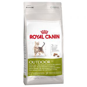 croccantini royal canin gatto